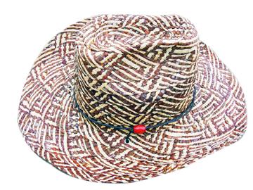 Fashion Men's Hats Blw08044