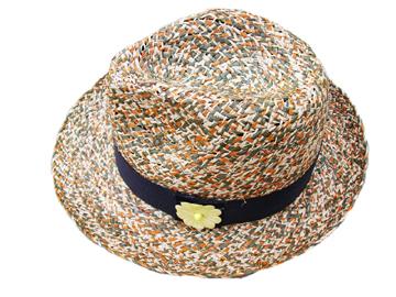 Fashion Men's Hats Blw08045