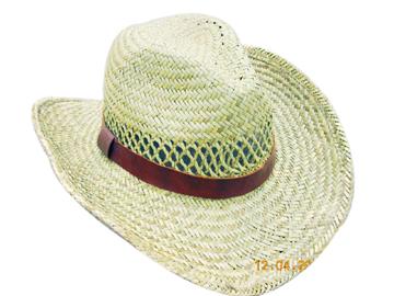 Fashion Men's Hats Blw08046