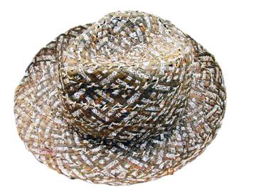 Fashion Men's Hats Blw08050