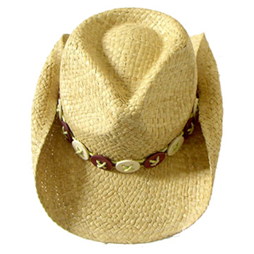 Fashion Men's Hats Blw08051