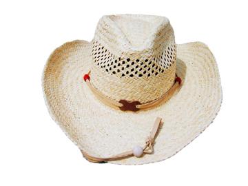 Fashion Men's Hats Blw08052