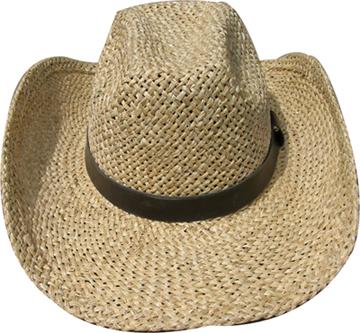 Fashion Men's Hats Blw08053