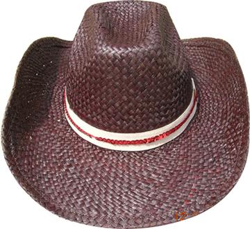 Fashion Men's Hats Blw08054