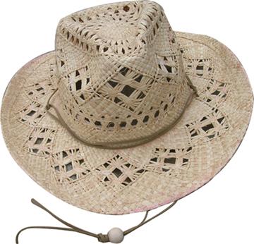 Fashion Men's Hats Blw08056