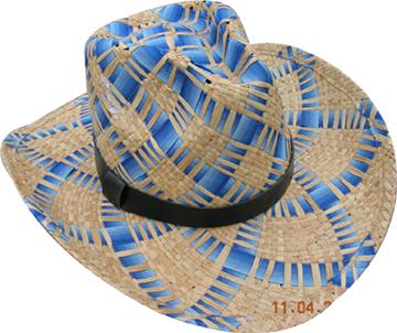Fashion Men's Hats Blw08057