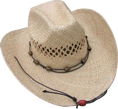 Fashion Men's Hats Blw08058