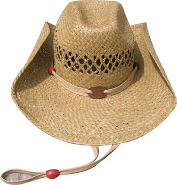 Fashion Men's Hats Blw08059