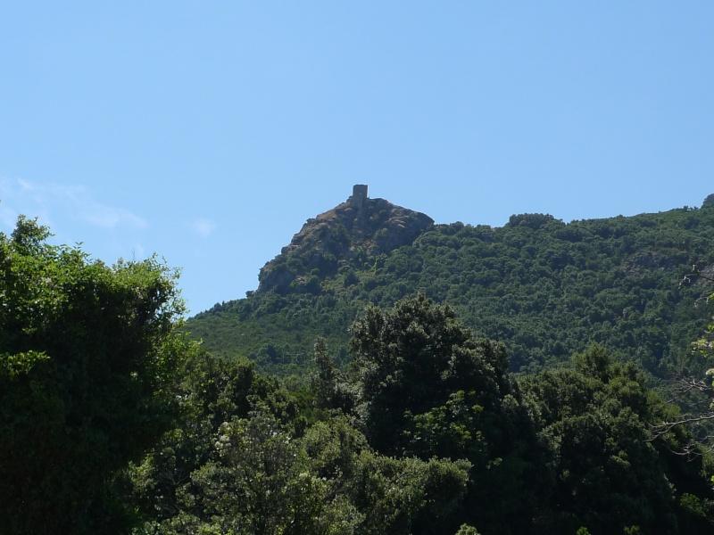 Corsica 2010 avec trois Puck P1020220
