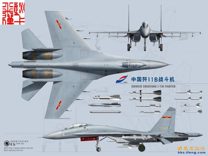 Chasseurs chinois J-11b_10