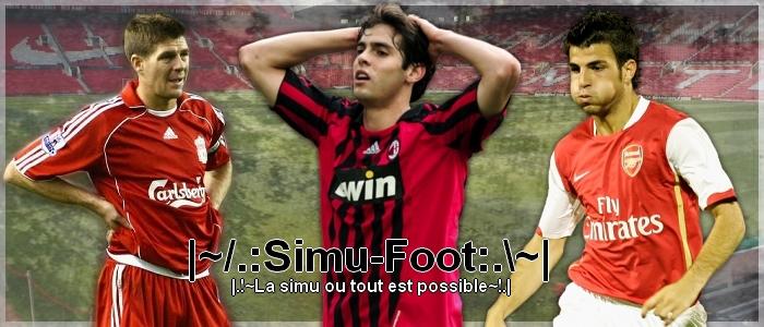 Simu-Foot