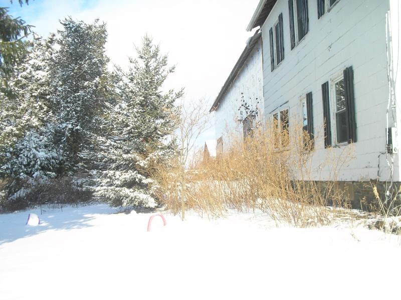 More Snow XD Pc300111