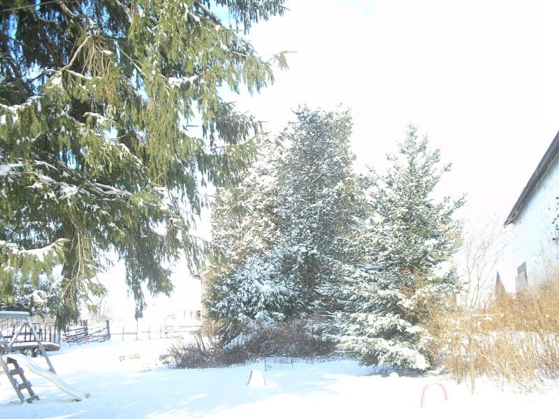 More Snow XD Pc300112