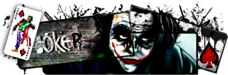 Les SDS gagnantes Joker11