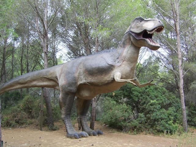 Musée Parc des Dinosaures à Mèze Sv102110
