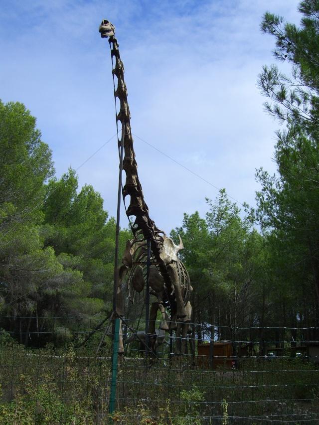 Musée Parc des Dinosaures à Mèze Sv102111