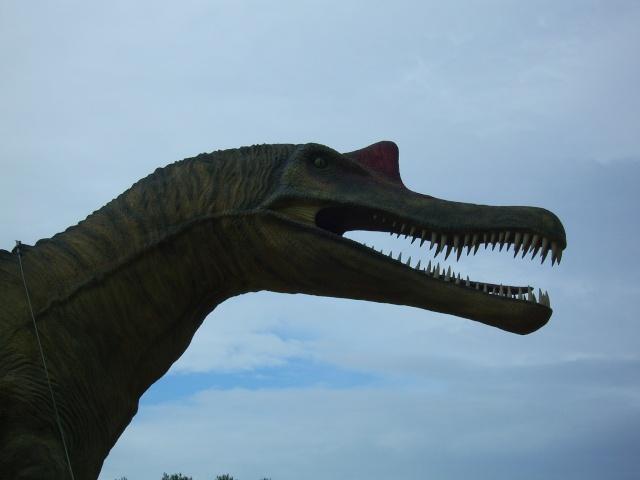 Musée Parc des Dinosaures à Mèze Sv102112