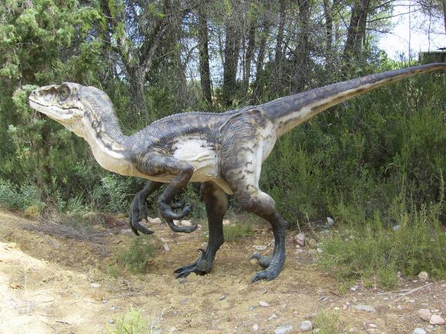 Musée Parc des Dinosaures à Mèze Sv102113