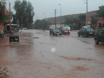 الأشجارPhotos des innondations de fi octobre 2006 à Tinjdad Maroc_13