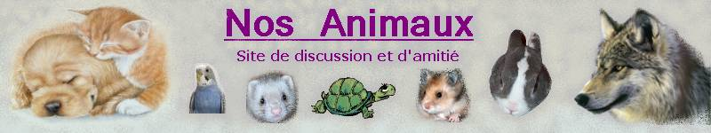 Nos animaux