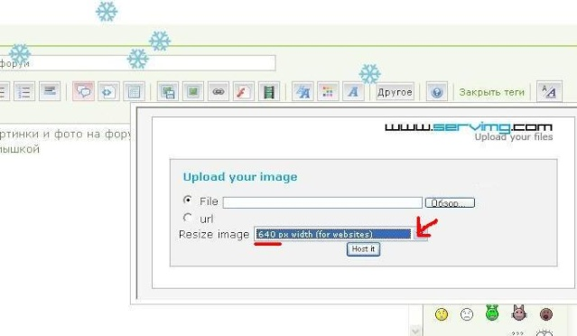 как вставить картинку на форум Screen20