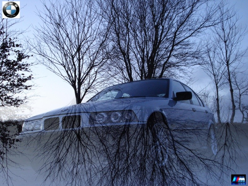 BMW Top_1310