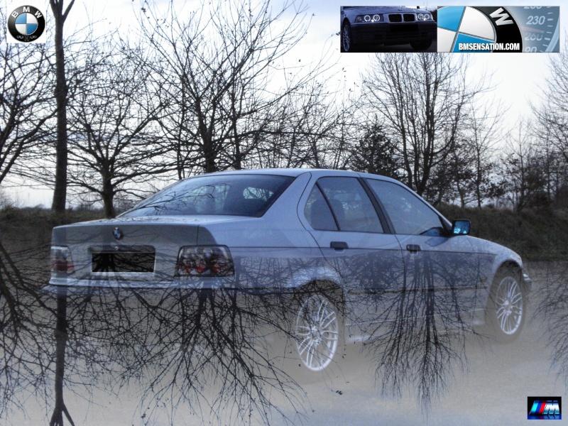 BMW Top_1410