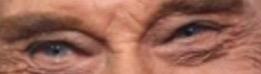A qui appartiennent ces yeux la - Page 8 Img_5010