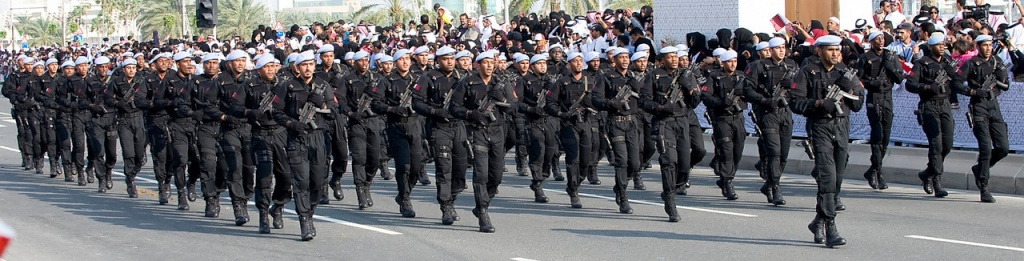 Qatar Armed Forces - Page 2 74470610