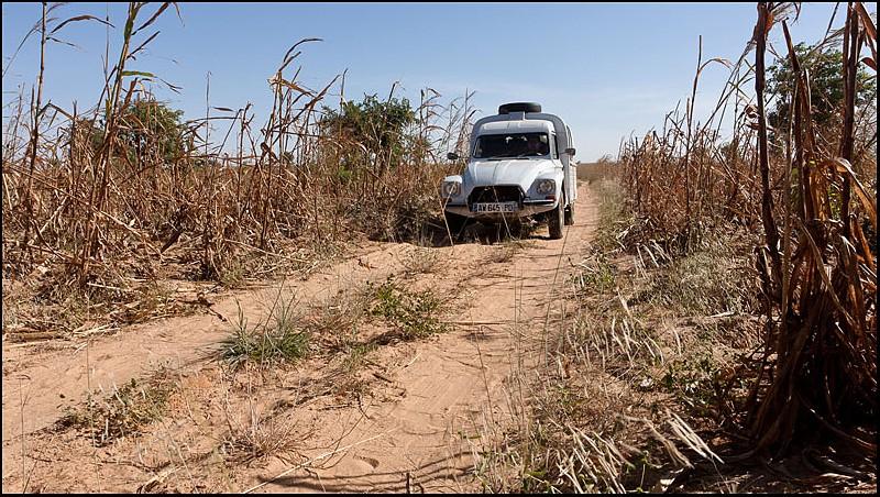 2010 Le pays Dogon en Acadiane 4x4   C-mali11