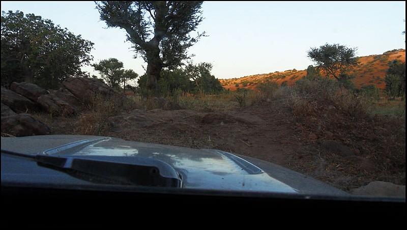 2010 Le pays Dogon en Acadiane 4x4   Mali-c10