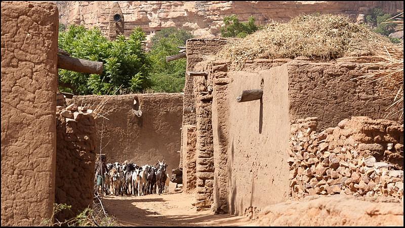 2010 Le pays Dogon en Acadiane 4x4   Mali-p24
