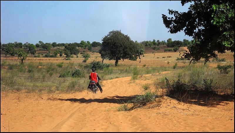 2010 Le pays Dogon en Acadiane 4x4   Mali-p48