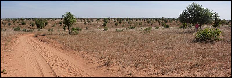 2010 Le pays Dogon en Acadiane 4x4   Mali-p50