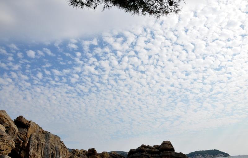 Sous ciel couvert Dsc_0011
