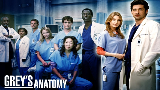 Grey's Anatomy The Story Sans_t26