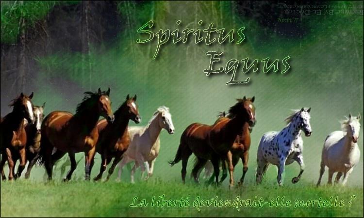 Spiritus Equus