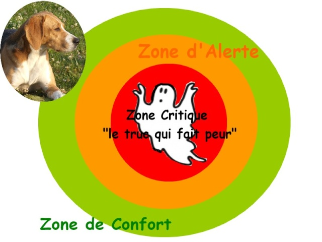 Réactivité: aboie sur les gens (connus ou non) - Page 2 Zone_c10
