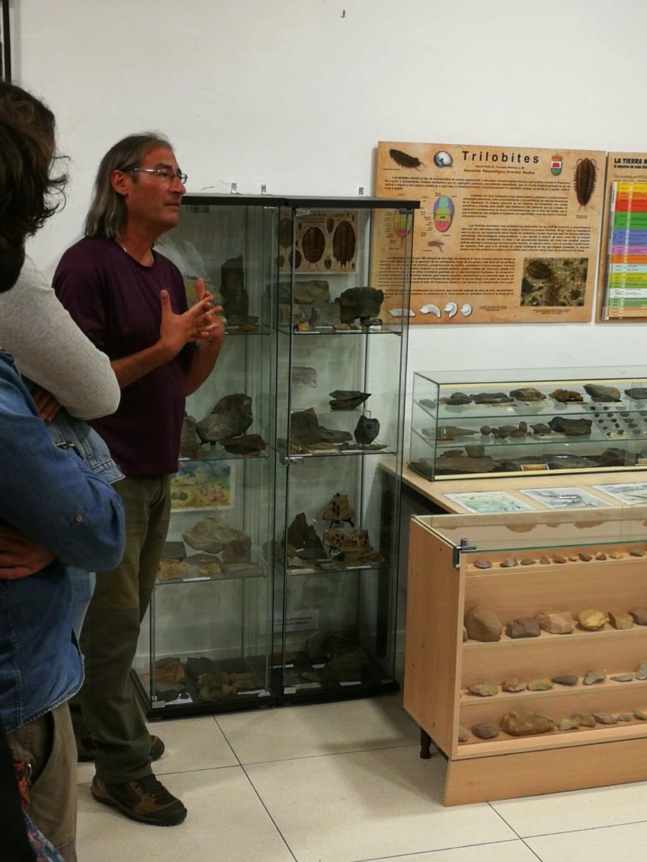Exposición permanente de los fósiles de los Montes de Toledo en San Martín de Montalbán Img-2015