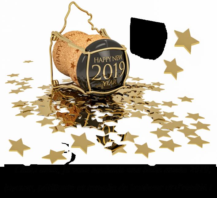 Meilleurs Voeux 2019 Nouvel10