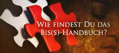 Mai 2011: Wie findest Du das Bis(s)-Handbuch? Umfrag10