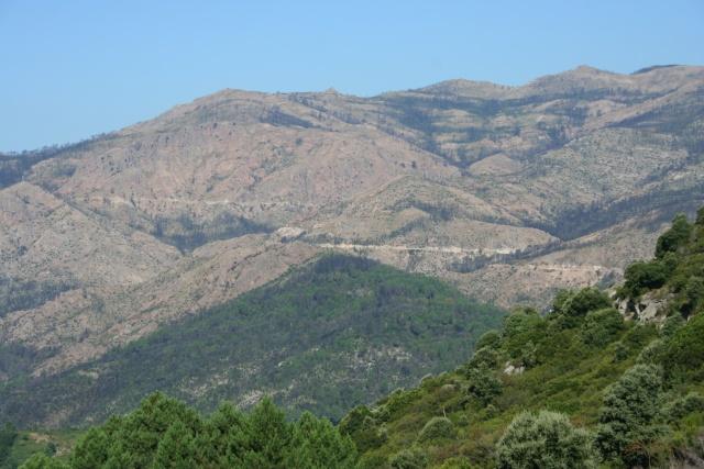 Corsica 2010 avec trois Puck Img_2813