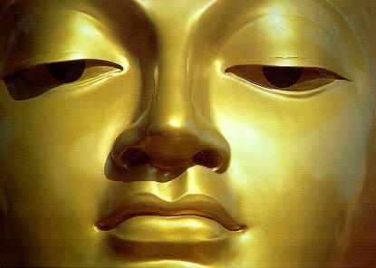 semaines du 6 au 12 juin 2011 Bouddh10