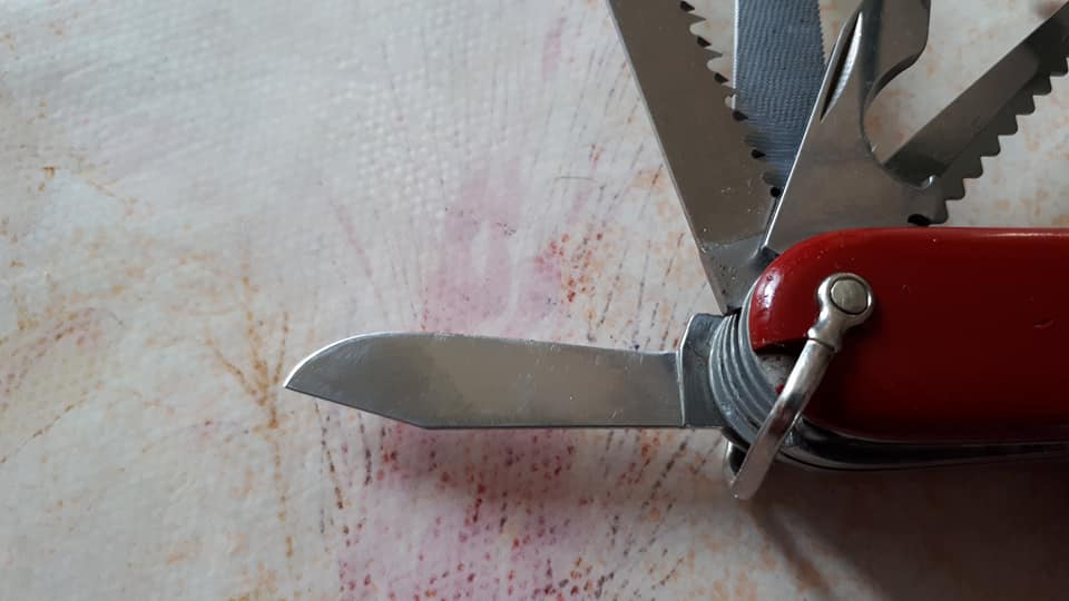 Mes 91mm rouge et ALOX 93 mm ( Victorinox ) -- ( Philippe ) Champi18