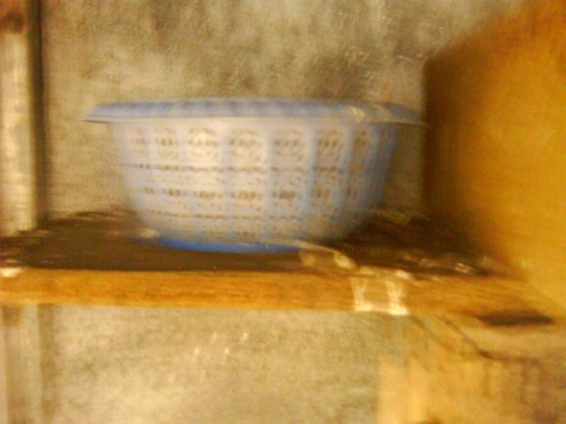 L'élevage de BANA Dsc03415