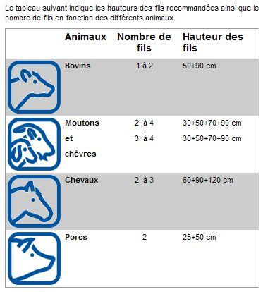 cloture electrique( protection chevreuil et autres  Clotur10