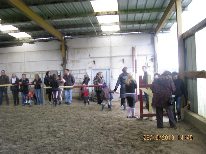 Fête équestre à Bernissart le 23 octobre: le défilé des chevaux à adopter Img_3317