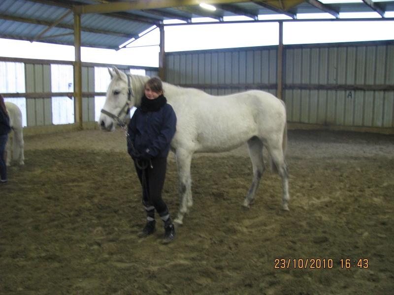 Fête équestre à Bernissart le 23 octobre: le défilé des chevaux à adopter Img_3412