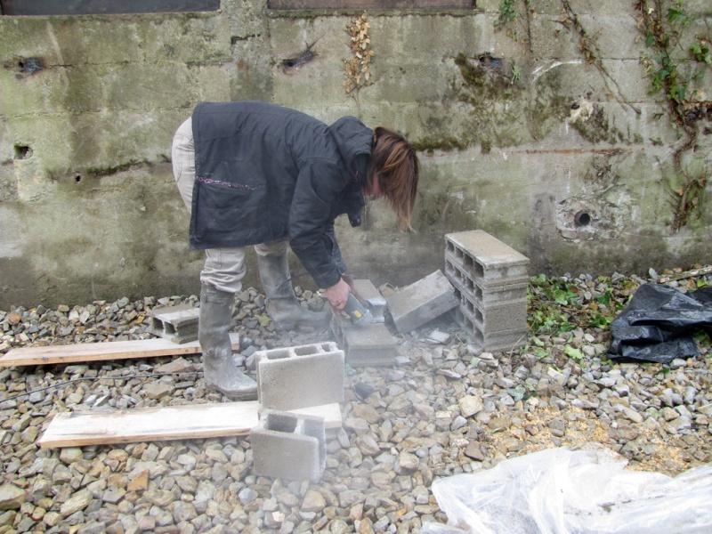 Aménagement d'un bâtiment pour le grand rhinolophe - Besoin d'aide ! - Page 4 Photo_11