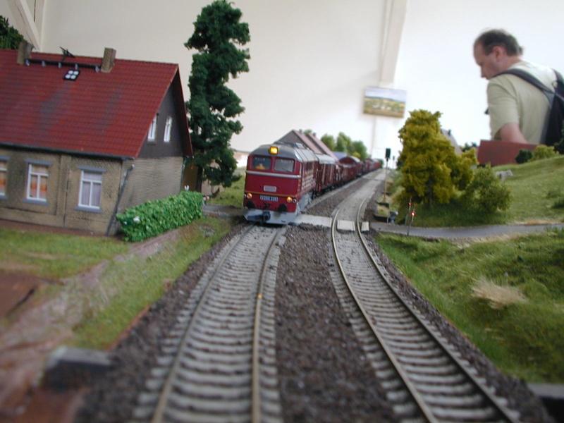 Miniatur Elbtalbahn in Königstein (Sachsen) Dscn0326